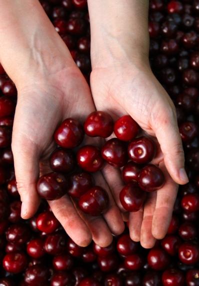 La pequeña fruta que esconde un enorme y dulce sabor